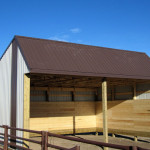 Cattle / Horse Shelter
